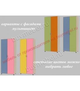 ДЕЛЬТА-2 шкаф для одежды фасады мультицвет